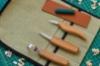 Set rezbarskih nožkov in žličarja S17 (3)